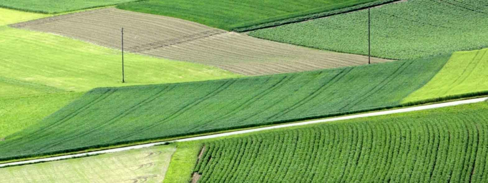 Terraplant Agriculture