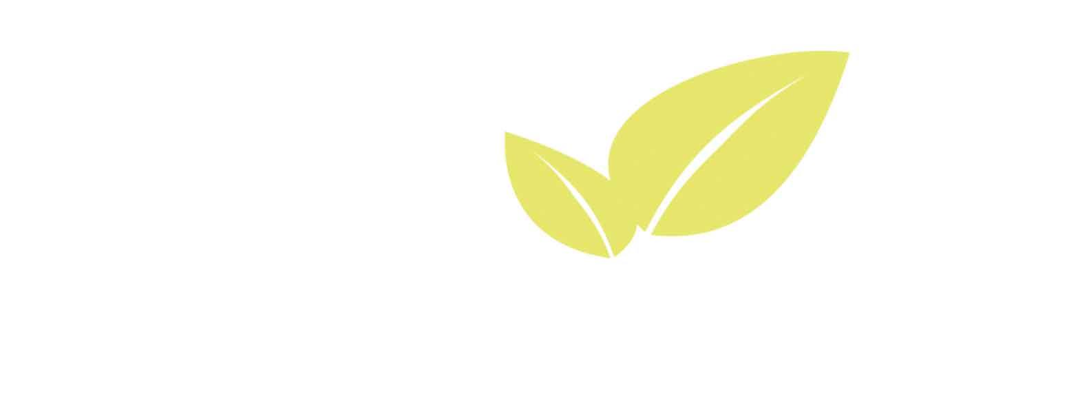 Terraplant